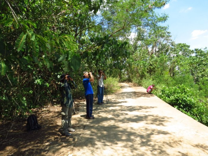 Some members of the WBCP were invited to do an ocular and informal bird survey of the Timberland subdivision in San Mateo, Rizal. Photo by Vincent Lao.